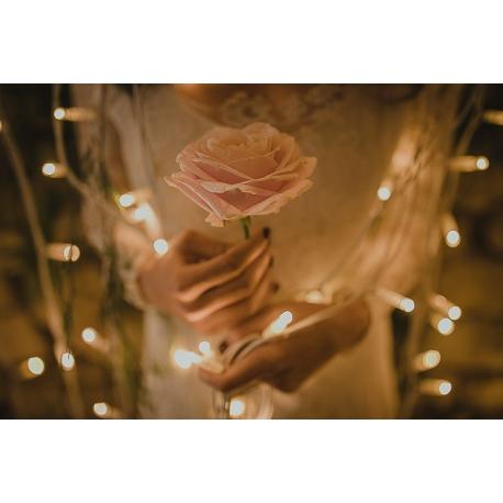 Iluminación decorativa para bodas: alquiler guirnaldas, microbombillas, luz para bodas